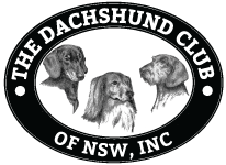 The Dachshund Club of NSW Inc